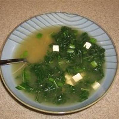 sopa de miso i