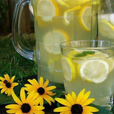 limonada do partido