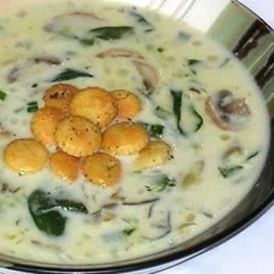 Sopa de ostras e espinafres