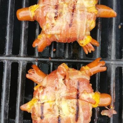 hambúrgueres de tartaruga de pescoço vermelho
