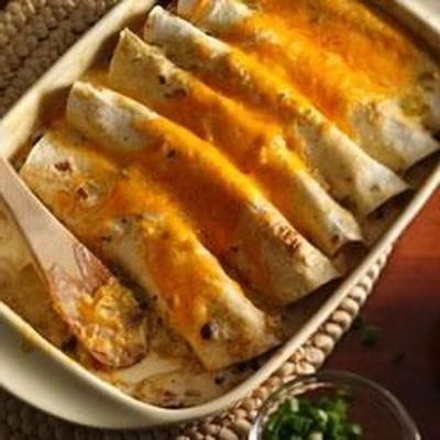 enchiladas de frango progresso®