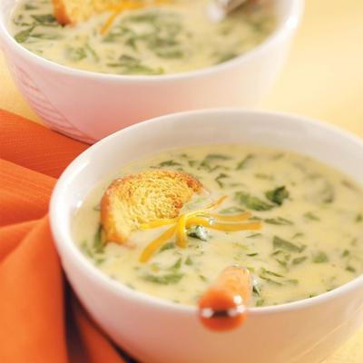 sopa de espinafre queijo