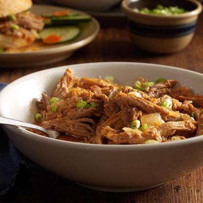 carne de porco desfiada com molho de gengibre asiático
