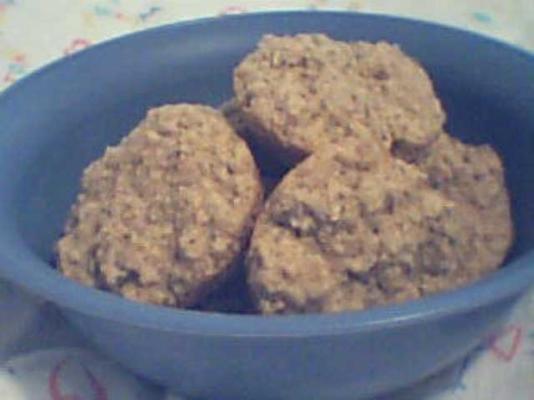 h.o. biscoitos de aveia