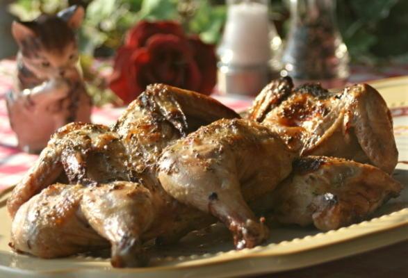 galinhas de caça cornish mel-erva