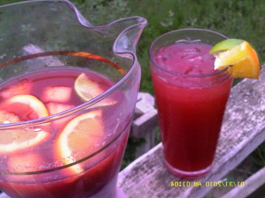 chá de frutas com especiarias