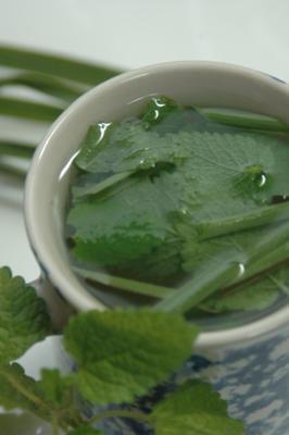 chá de erva-cidreira gostoso