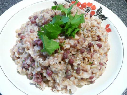feijões vermelhos e arroz de inspiração jamaicana do nava