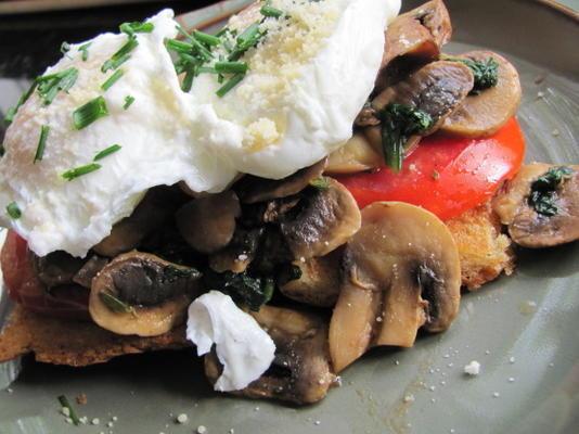 ovos escalfados com cogumelos e tomates