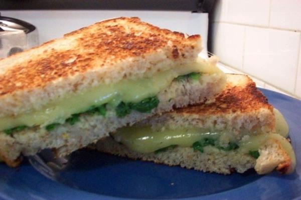 sanduíches de espinafre e havarti em pão multigrain
