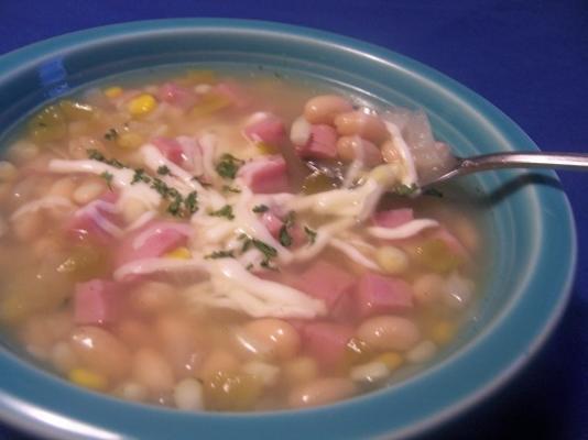 sopa de milho e feijão branco de verão