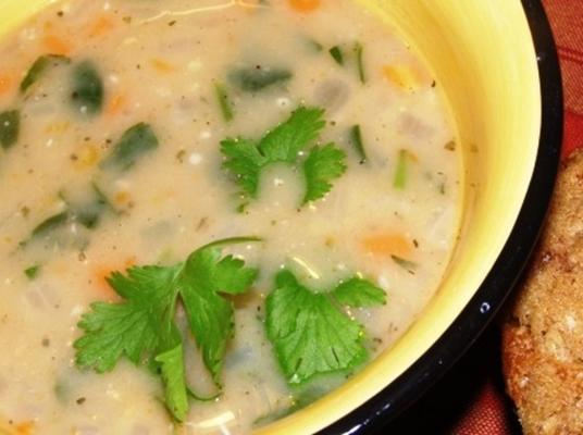 sopa de feijão branco cremoso