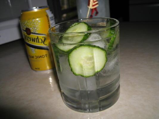 gin e tônica de pepino