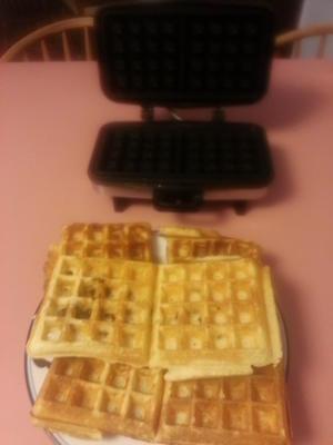waffles fermentados