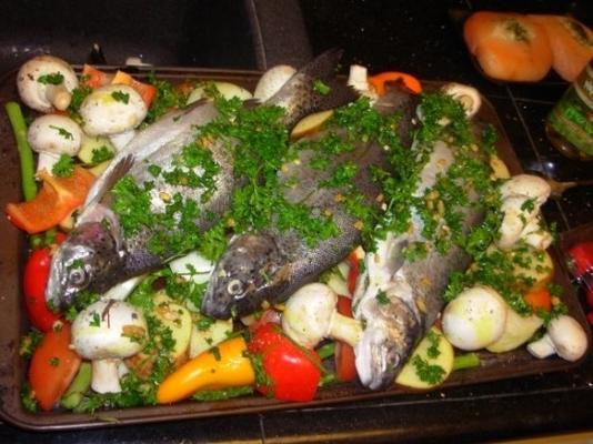 tajine de peixe marroquino